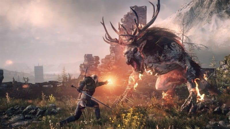 WITCHER 3 MORALITY METERS RPGs