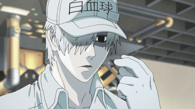 White Blood Cell in CELLS AT WORK